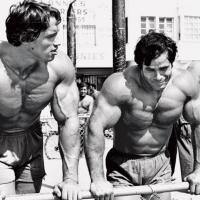 Dezvoltarea forței musculare