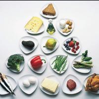 Bazele nutritiei
